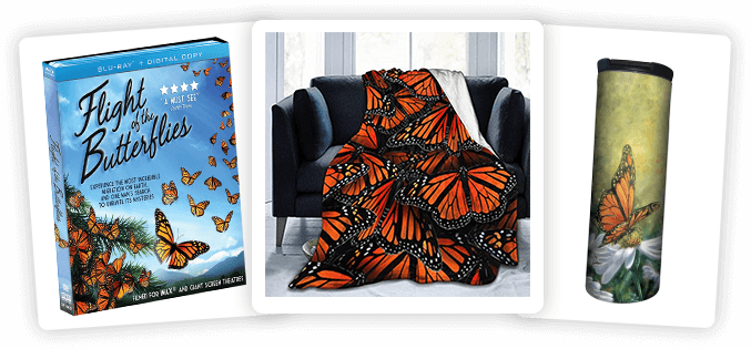 Monarch Butterfly prize pack